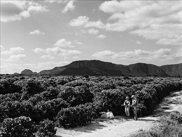 preto e branco galeria de fotos delta cafés